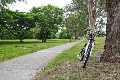 Bikepath in the Park