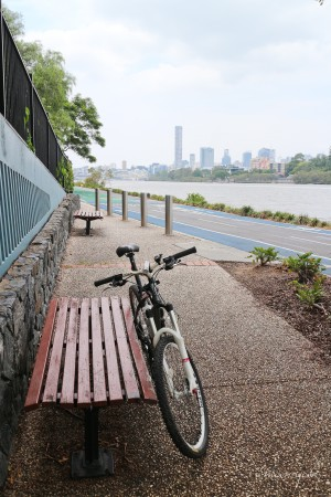 Bikepath along the river